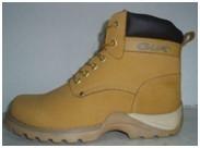 PPE shoe 1